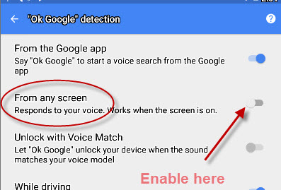 enable-voice-detection-any-screen
